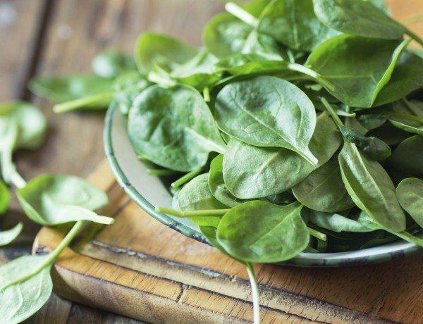 fresh spinach ready to wash