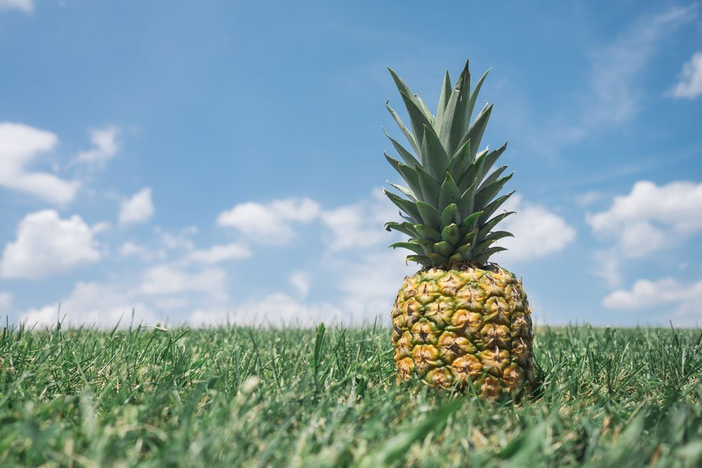 pineapple image by unsplash