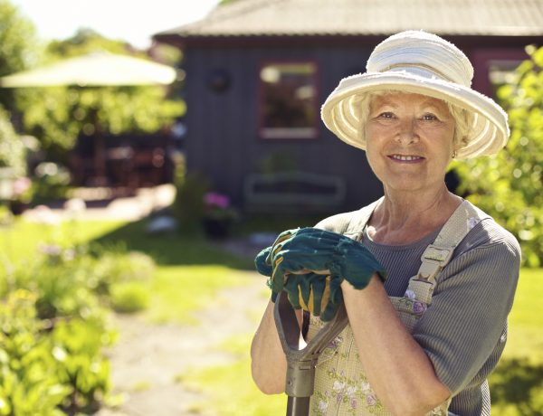 Portrait of senior woman wearing hat with gardening tools outdoors. Elder woman standing with shovel in her backyard garden